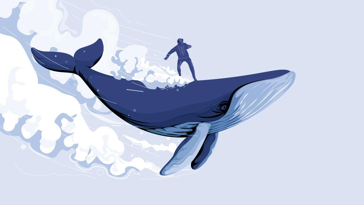 Softbank and the NASDAQ Whale